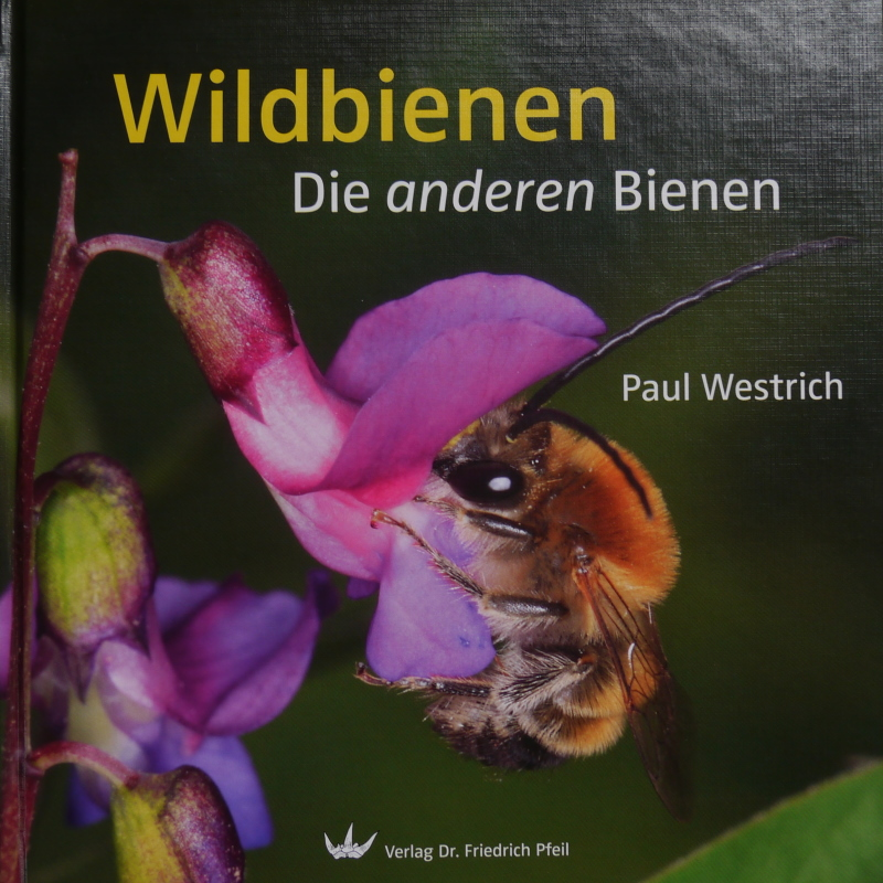 Insektenhotels Und Nisthilfen Wildbienenschreiner